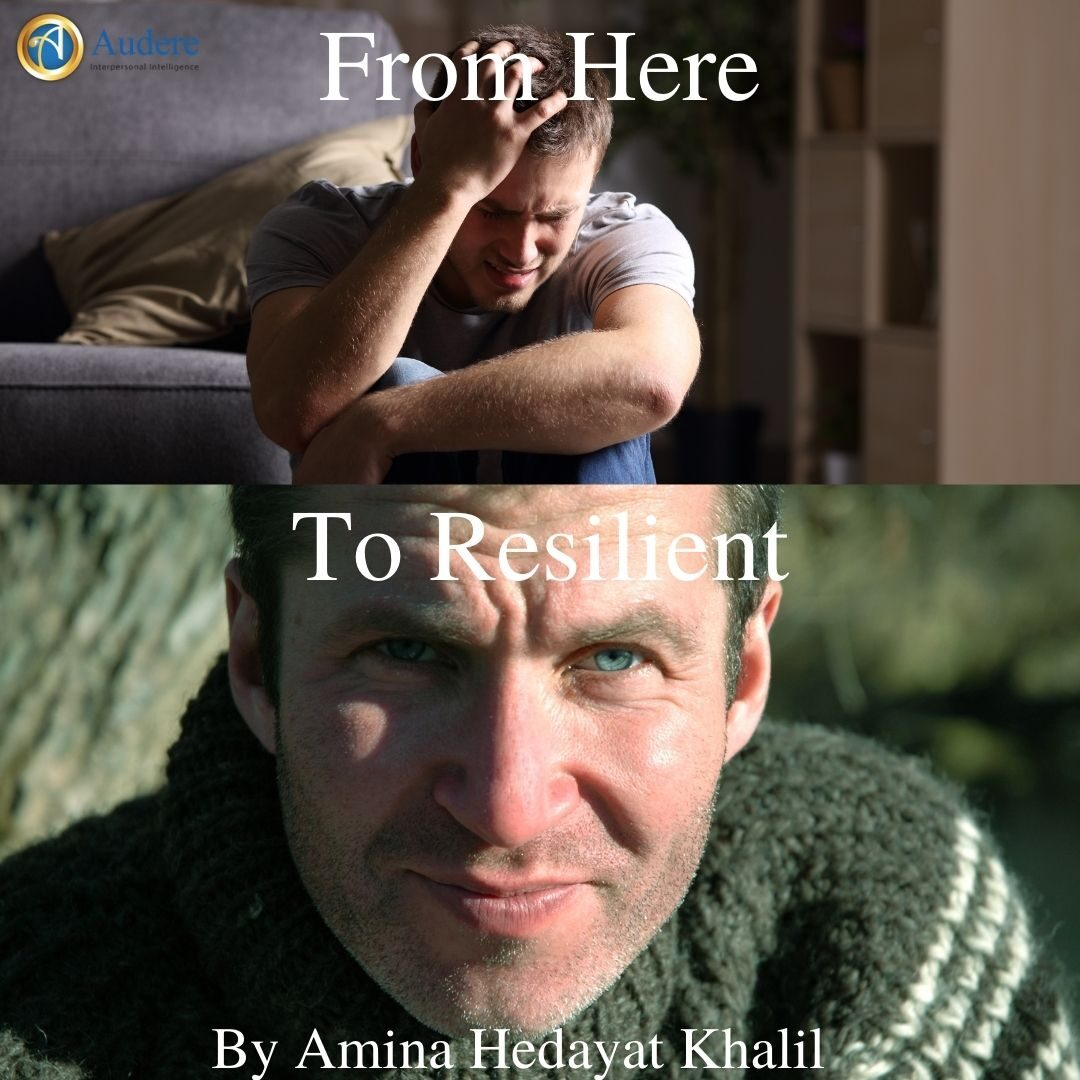 From Here To Reslient -small